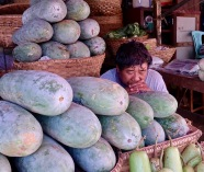 Zay Cho melons